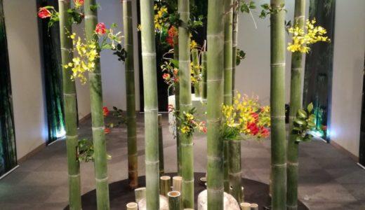 大阪道頓堀で花展をやってます